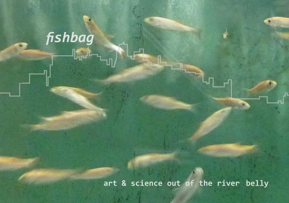 fishbag